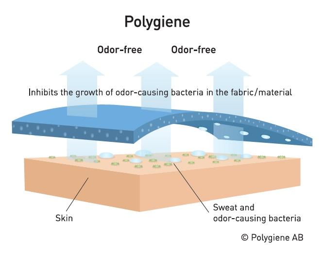 polygene